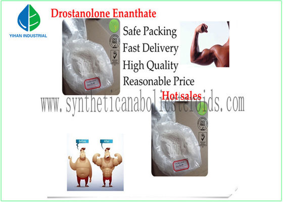 China Oral Muscle Gain Testosterone Steroid Hormone Testosterone Acetate Test A 1045-69-8 supplier