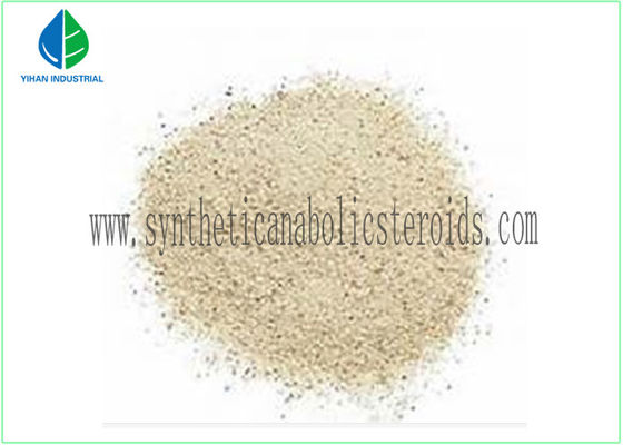 China Tamoxifen Citrate Nolvadex Fitness Steroids For Anti Aging CAS 54965-24-1 supplier