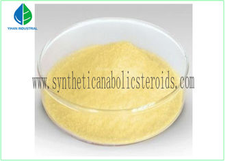 China CAS 10161-33-8 Safe Trenbolone Enanthate Injection Tren E Yellow Powder supplier