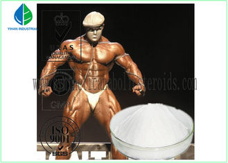 China Pharmaceutical Powder Anabolic Steroids Muscle Mass Supplements Test Isocaproate supplier