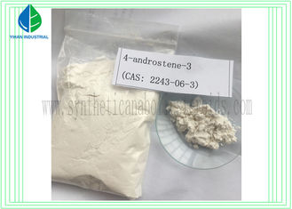 China 6- Oxo Muscle Building Steroids 4- androstene -3 CAS 2243-06-3 to Increase Muscle Mass supplier