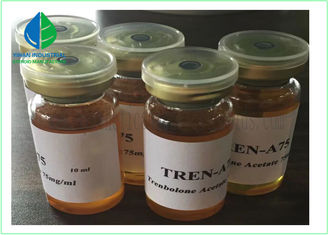 China Semi - Finished Injectable Anabolic Steroids Bodybuilding Oil Luquid Tren Ace 75mg / Ml supplier