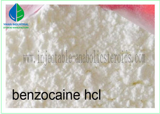 China Local Anesthetic Agent Benzocaine Hydrochloride / Benzocaine HCl 23239-88-5 supplier