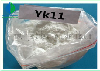 China 99% Raw Steroids Sarms Powder YK11 Powder CAS 431579-34-9 For Muscle Gain supplier