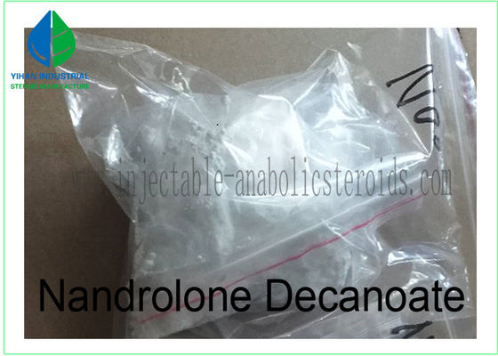 China Anabolic Raw Steroids Deca Durabolin Nandrolone Decanoate 360 70 3 for Muscle Building supplier