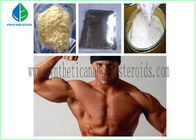 China Muscle Growth Bodybuilding Testosterone Steroid Hormone Testosterone Enanthate CAS 315-37-7 factory