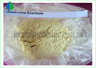 China Trenbolone Enanthate Powder CAS 10161-33-8 factory