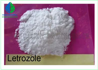 China CAS 112809-51-5 Letrozole / Femara Steroid Powders For Women Breast Cancer Treatment factory
