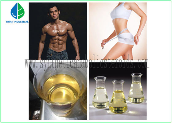 China Medicine Chemical Testosterone Acetate 1045-69-8 Testosterone Steroid Hormone White Powder Purity 99% For BodyBuilding factory