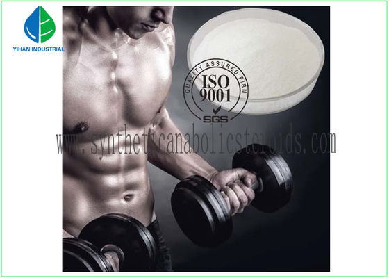 High Purity Testosterone Steroid Hormone White Powder , Testosterone Decanoate CAS 5721-91-5