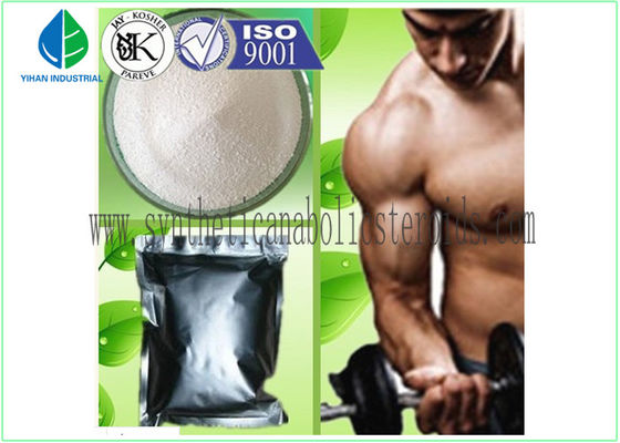 China Pharmaceutical Testosterone Steroid Injections Test Decanoate EINECS 227-226-4 factory