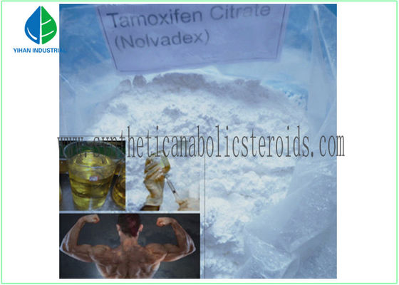 China Safe CAS 10540-29-1 Bulking Cycle Steroids Injectable / Oral Tamoxifen Citrate factory