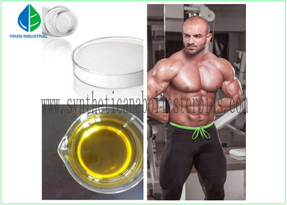 China High Purity Lean Muscle Building Steroids , Muscle Enhancing Steroids Testostero factory