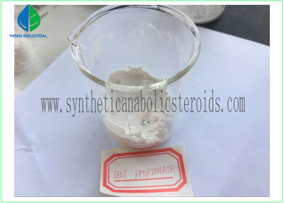 China CAS 57-85-2 Tren Anabolic Steroid Test Propionate , Testosterone Propionate 100mg/ml factory