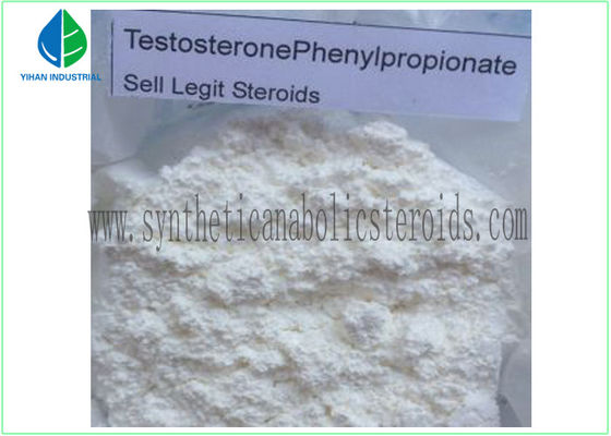 China 99% Purity Raw Hormone Powders Steroids Testosterone Phenylpropionate for Muscle Mass factory