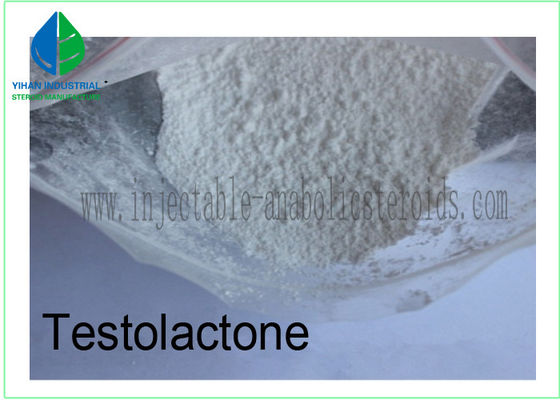 China Anti Estrogen Steroids Male Hormone Testosterone CAS 968-93-4 for Weight Loss factory