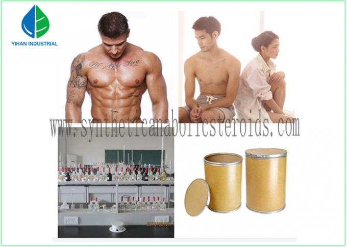 Testosterone Acetate , Test A Testosterone Steroid Hormone 99%  Oral Muscle Gain CAS:1045-69-8