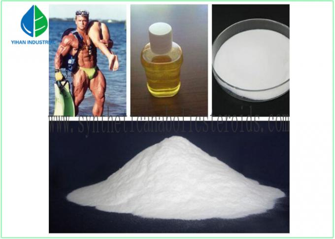 Raw Prohormone Powders Testosterone Steroid Hormone , Test Supplements Bodybuilding Steroids