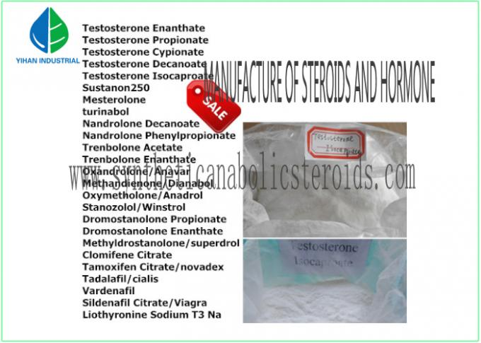Testosterone Isocaproate CAS 15262-86-9 Testosterone Steroid Hormone Test Crystalline Powder For Muscle Building
