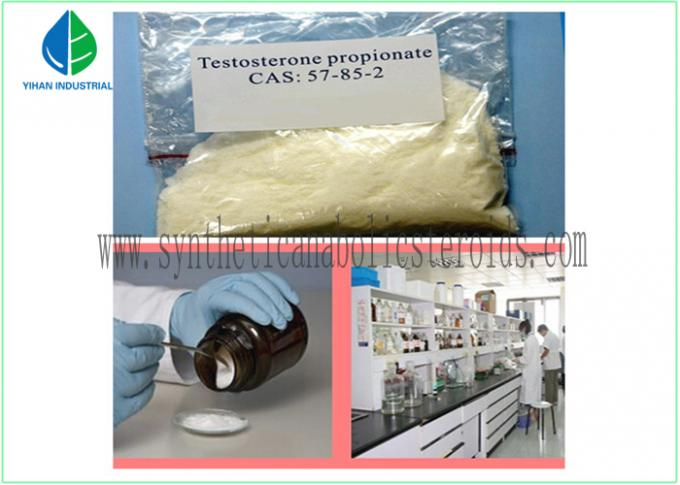 CAS 57-85-2 Pure Testosterone Steroid Hormone White Solid Powder Test Prop