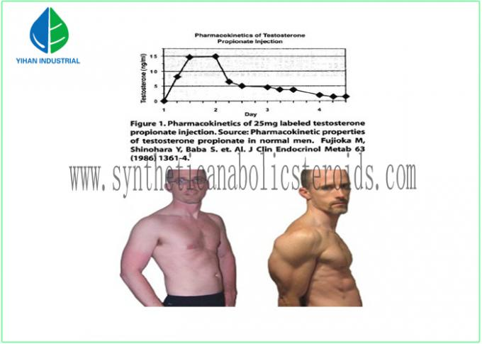 Bodybuilding Supplements Testosterone Steroid Hormone , Testosterone Propionate Injection