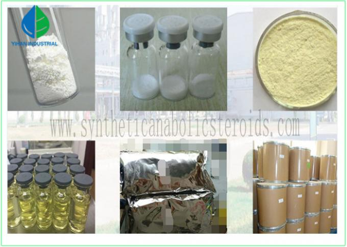 Testosterone Propionate Powder Androgenic Anabolic Steroids Test Prop Hormone